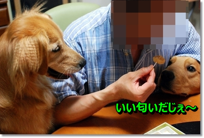 DSC_0030_20130808200241eca.jpg