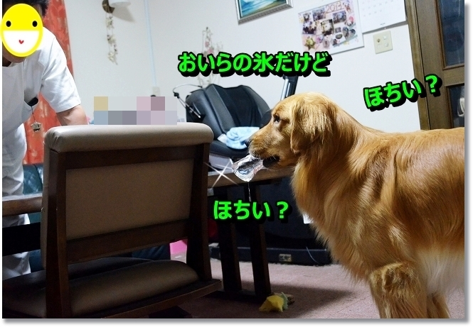 DSC_6916_20130810190842156.jpg