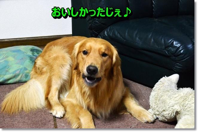 DSC_6998_201308101910022dd.jpg