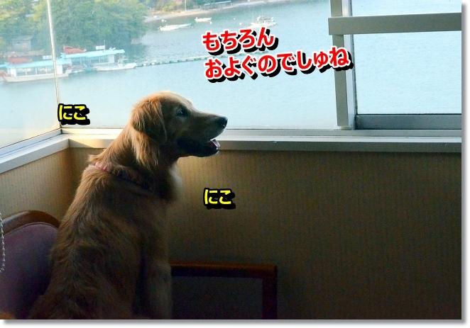 DSC_7641.jpg