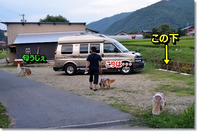 DSC_8188_20130903191309bc4.jpg