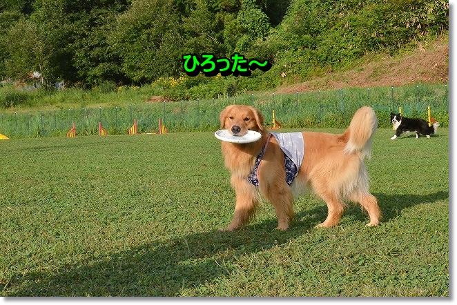 DSC_8435.jpg
