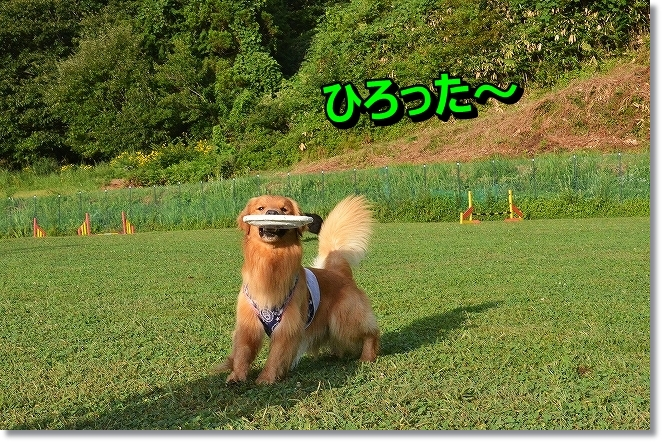 DSC_8436.jpg