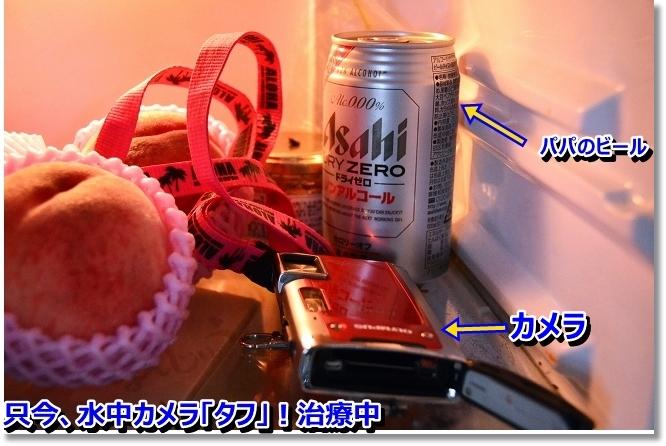 DSC_8620.jpg