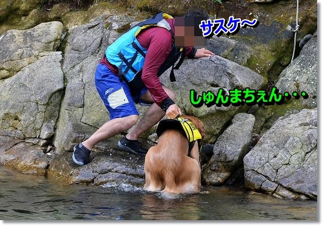 DSC_9650_20130912002633070.jpg