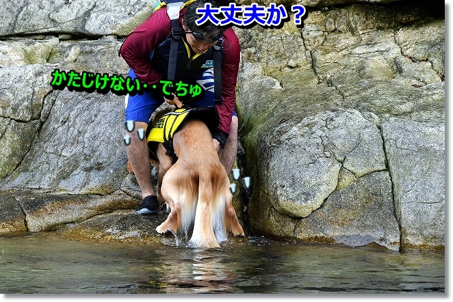 DSC_9797.jpg