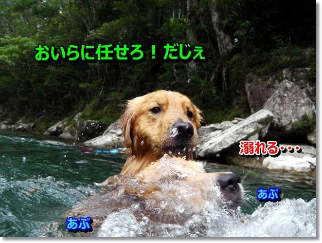 IMGA0014_20130823101354ff9.jpg