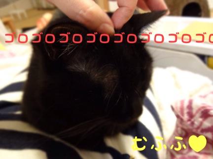 20131021223506338.jpg