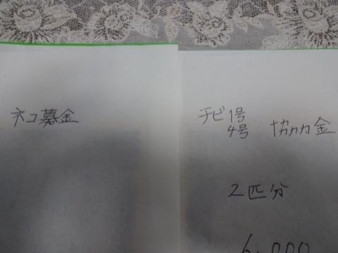 20131112232904b12.jpg