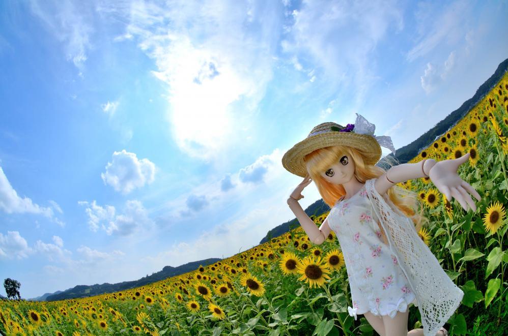 DSC_0147_01aa.jpg