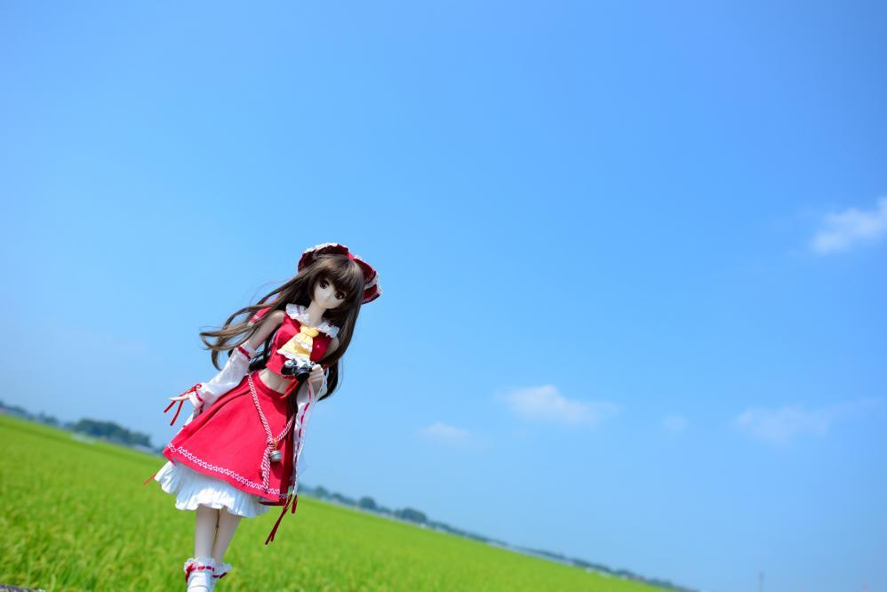 DSC_1464aa.jpg