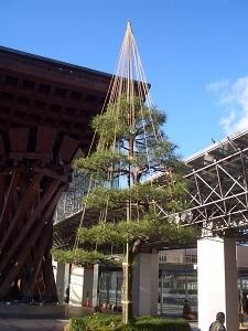 金沢の冬の風物詩 雪吊り