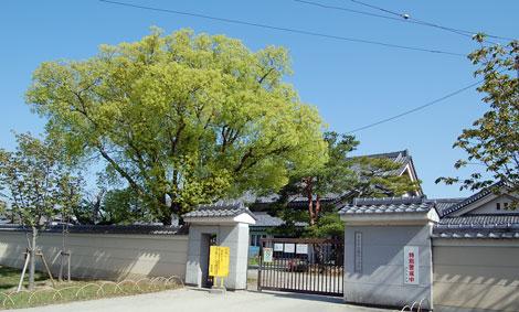 12.4.29鼓阪小学校