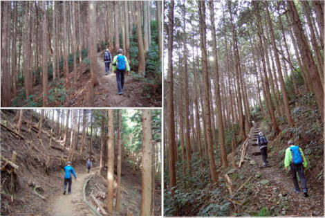 13.11.2登山2
