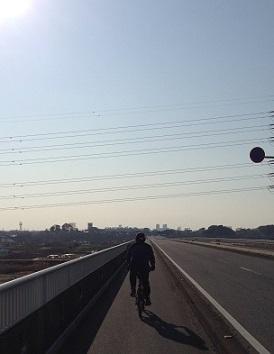 新見沼大橋