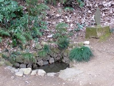 津久井城6