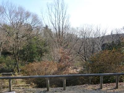 平山城址公園4