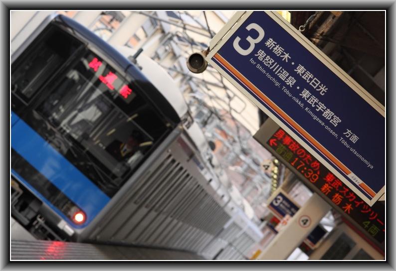 IMG_9261 - コピー
