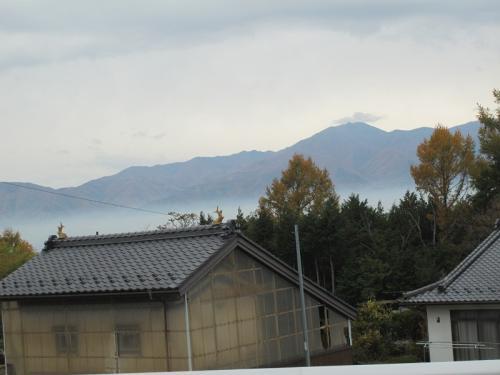 長野県 シャチホコのある家