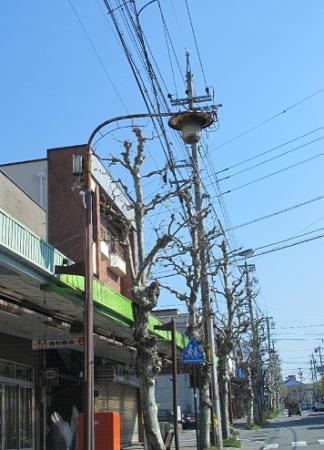 長野県飯田市街 街灯