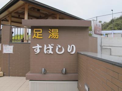 道の駅『すばしり』足湯