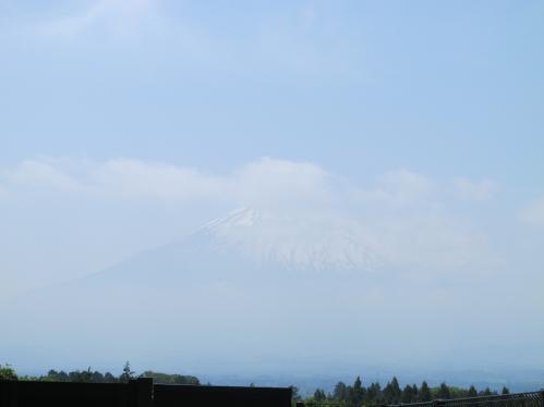 あしがら温泉から富士山