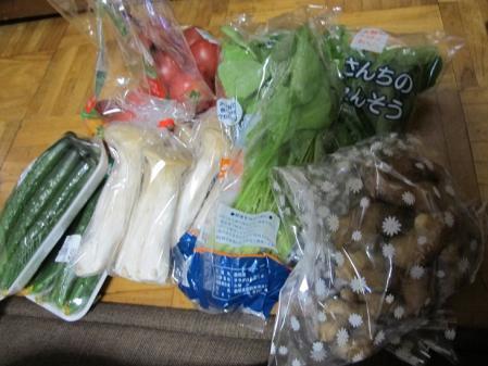 道の駅『すばしり』で買った野菜
