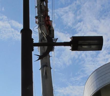 石垣島 市街地カジキ街灯