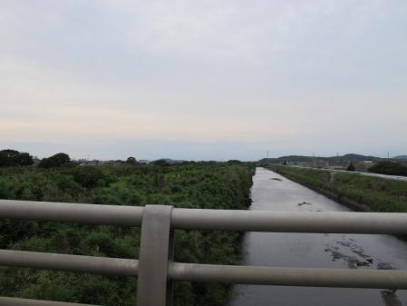 マングローブでは無い川