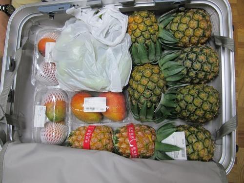 南国フルーツのスーツケース