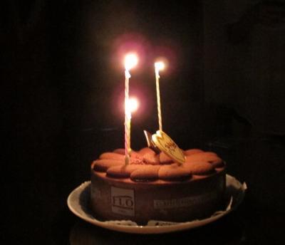 MSちゃん誕生会のケーキ