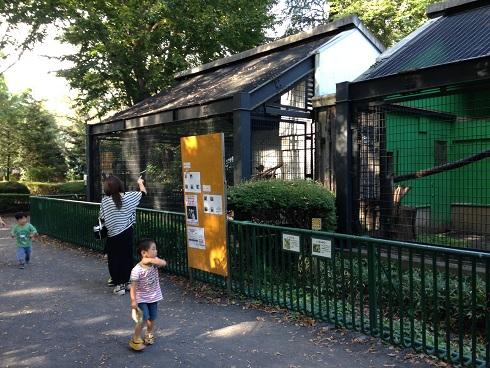 羽村動物園2