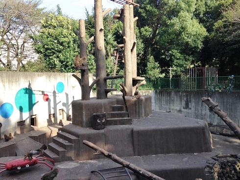 羽村動物園7