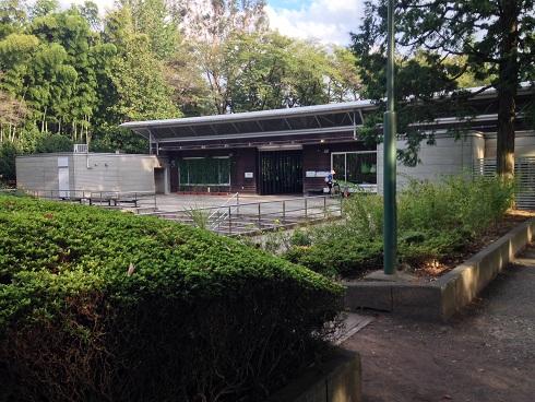 羽村動物園10