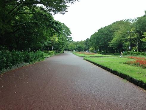 所沢航空公園6