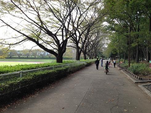 あきる台公園6