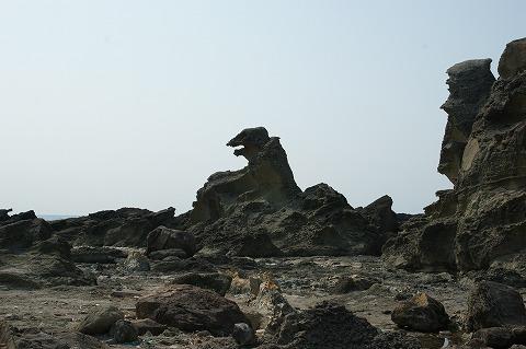ゴジラ岩C03099