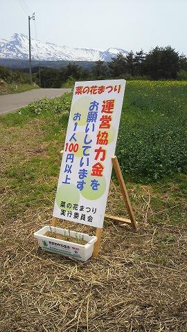 菜の花まつり0412