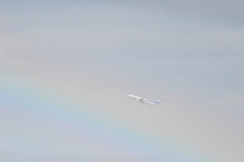 虹のANA