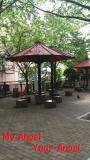 亀散歩convert_20130505090759