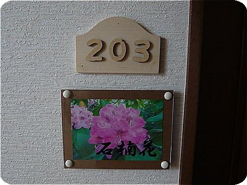 s-花の風3日046