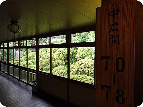 HY211.jpg