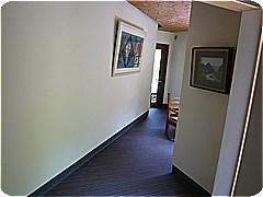 sTT591.jpg