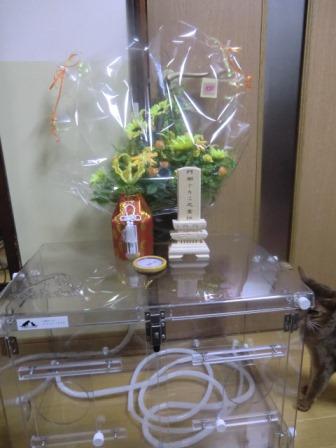 酸素室とお骨