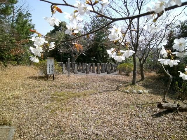 浜田陸軍墓地 (7)