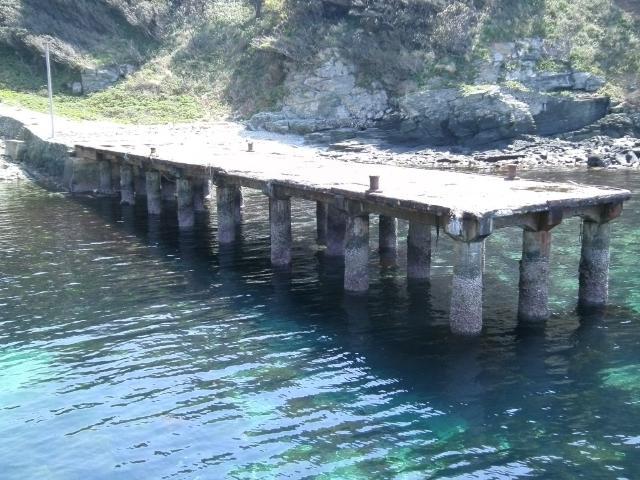 正野谷桟橋 (3)