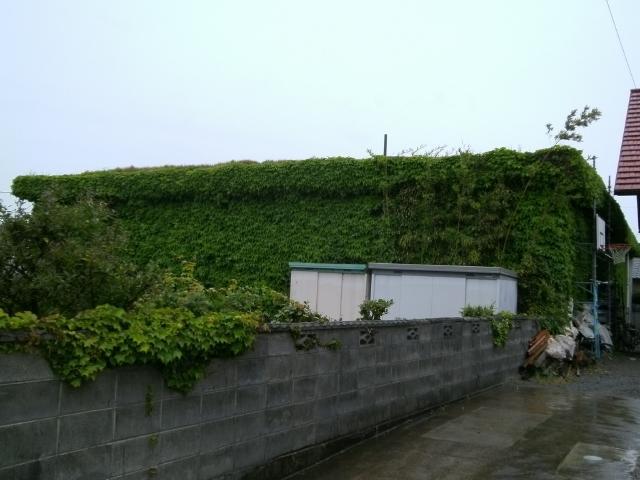 徳島空 (4)
