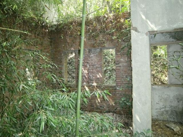 大津島高角砲台2 (3)