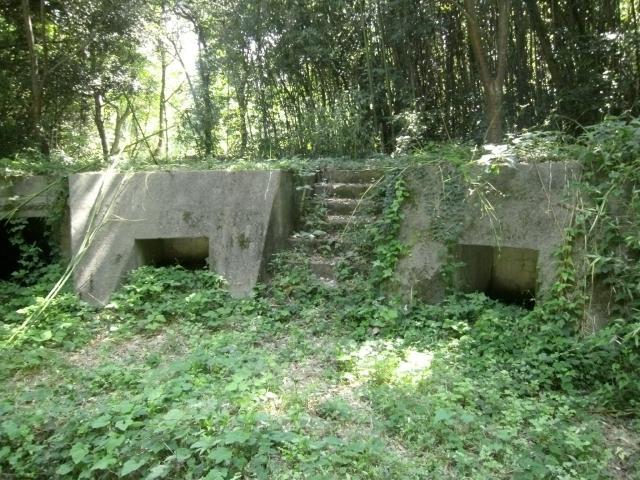 大津島砲座 (5)