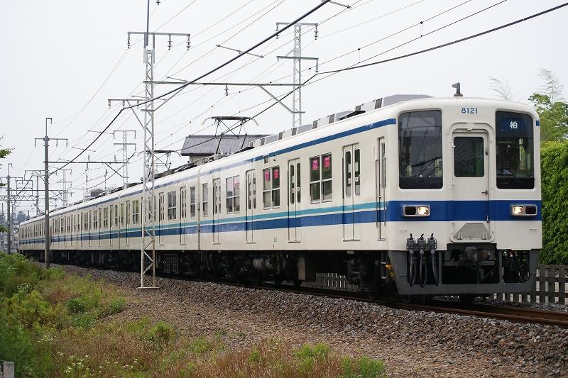 s-DSC00654.jpg